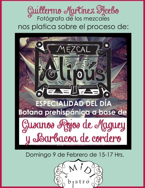 MEZCAL ALIPUS! Degustación y botana PREHISPÁNICA mañana en el Midi!